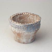 陶器製(2号ポット相当)多肉植物の欲しがる植木鉢  AAScd-2751ブルー
