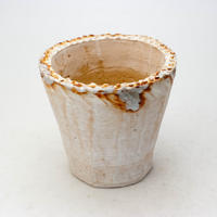陶器製(3号ポット相当)多肉植物の欲しがる植木鉢 NSM-7590