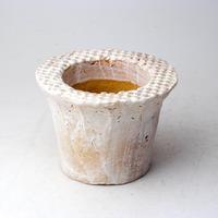 陶器製(2号ポット相当)多肉植物の欲しがる植木鉢 SSSd-2990