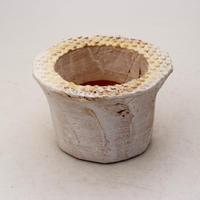 陶器製(2号ポット相当)多肉植物の欲しがる植木鉢 PScd-イエロー6976