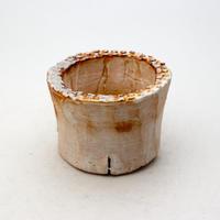 陶器製(2号ポット相当)多肉植物の欲しがる植木鉢 PR-9166