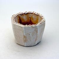 陶器製(2号ポット相当)多肉植物の欲しがる植木鉢 KES-8940