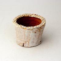 植木鉢 陶器(1.5号ポット相当)多肉植物の欲しがる植木鉢 SMSSc-2235イエロー