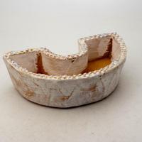 陶器製 多肉植物の欲しがる植木鉢 DCS-8634