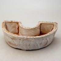 陶器製 多肉植物の欲しがる植木鉢 DCS-8635