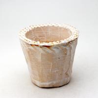 陶器製(2.5号ポット相当)多肉植物の欲しがる植木鉢 NSS-370