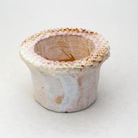 陶器製(2号ポット相当)多肉植物の欲しがる植木鉢 PScd-7609イエロー、パープル