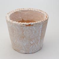 陶器製(2号ポット相当)多肉植物の欲しがる植木鉢 SSLd-9693