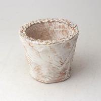 陶器製(2号ポット相当)多肉植物の欲しがる植木鉢 OPSS-3167