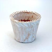陶器製(2.5号ポット相当)多肉植物の欲しがる植木鉢 SMS-8917