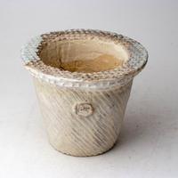 陶器製(3号ポット相当)多肉植物の欲しがる植木鉢 NSMcd-3022グリーン