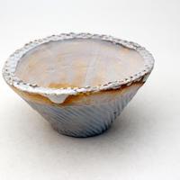 陶器製 多肉植物の欲しがる植木鉢 CCc 曲-419 ブルー