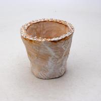 陶器製(2号ポット相当)多肉植物の欲しがる植木鉢 OPSS-8391