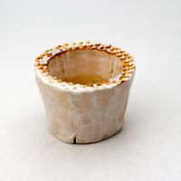 陶器製(2号ポット相当)多肉植物の欲しがる植木鉢 PR-381