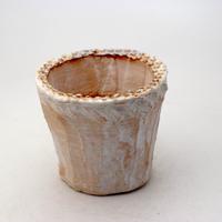 陶器製(2.5号ポット相当)多肉植物の欲しがる植木鉢 NSS-8964