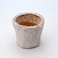陶器製(2号ポット相当)多肉植物の欲しがる植木鉢 NSSS-7171