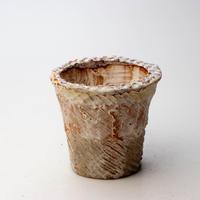 陶器製 多肉植物の欲しがる植木鉢 ICSc-4252イエロー&グリーン