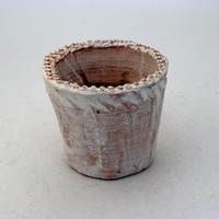 陶器製(2.5号ポット相当)多肉植物の欲しがる植木鉢 NSS-8673