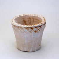 陶器製(2.5号ポット相当)多肉植物の欲しがる植木鉢 NSS-7730