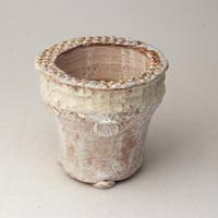 陶器製(2号ポット相当)多肉植物の欲しがる植木鉢 AAMcd-2758イエロー