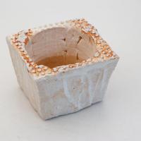 陶器製(2号ポット相当)多肉植物の欲しがる植木鉢 PS角-9742