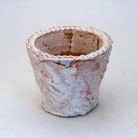 陶器製(2.5号ポット相当)多肉植物の欲しがる植木鉢 OPS-7718