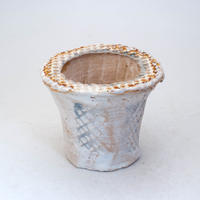 陶器製(2号ポット相当)多肉植物の欲しがる植木鉢 AAMcd-7770ブルーグリーン