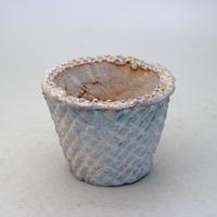 陶器製(2.5号ポット相当)多肉植物の欲しがる植木鉢 SMSc-8683ブルー