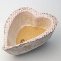 陶器製 多肉植物の欲しがる植木鉢-ときめき A深cd-4527ピンク