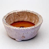 陶器製 多肉植物の欲しがる植木鉢 AQSScd -7205パープル