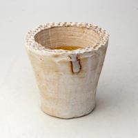 陶器製(2号ポット相当)多肉植物の欲しがる植木鉢 AAM-  2067