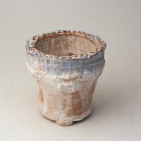 陶器製(2号ポット相当)多肉植物の欲しがる植木鉢 AAMcd-2754ブルー