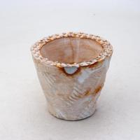 陶器製(2号ポット相当)多肉植物の欲しがる植木鉢 OPSS-8386
