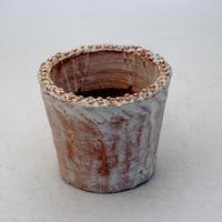 陶器製(2.5号ポット相当)多肉植物の欲しがる植木鉢 NSS-8671