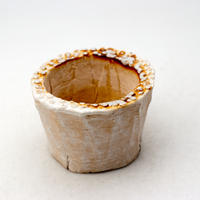 陶器製(2号ポット相当)多肉植物の欲しがる植木鉢 PR-379