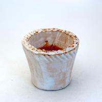 陶器製(2号ポット相当)多肉植物の欲しがる植木鉢 NSSS-8931