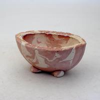 陶器製 多目的自由な植木鉢 CVc-ミカゲ-8833ピンク