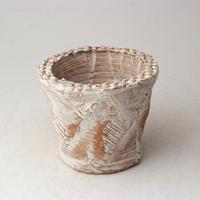 陶器製(2号ポット相当)多肉植物の欲しがる植木鉢 OPSS-2813