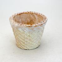 陶器製(2.5号ポット相当)多肉植物の欲しがる植木鉢 SMSc-9412イエロー