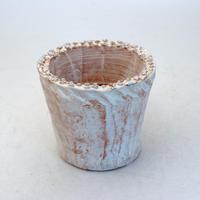 陶器製(2.5号ポット相当)多肉植物の欲しがる植木鉢 NSS-8670