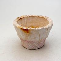陶器製 多肉植物の欲しがる植木鉢 IBSc-9415ピンク