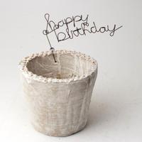 陶器製(2.5号ポット相当)多肉植物の欲しがる植木鉢 NSS+wireサビ-3435