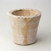 陶器製(2号ポット相当)多肉植物の欲しがる植木鉢 AAM-  2071