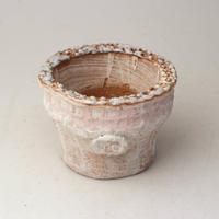 陶器製(2号ポット相当)多肉植物の欲しがる植木鉢  AAScd-2746ピンク