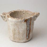 陶器製(2号ポット相当)多肉植物の欲しがる植木鉢 SSSd-2828