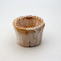 陶器製(2号ポット相当)多肉植物の欲しがる植木鉢 PR-9163