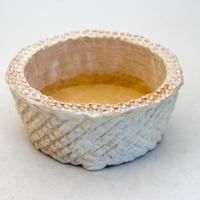 陶器製 多肉植物の欲しがる植木鉢 AQSScd -9399-イエロー