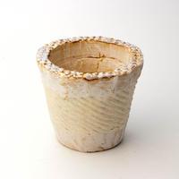 陶器製(2.5号ポット相当)多肉植物の欲しがる植木鉢 NSSc-4054イエロー