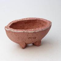 3/24〜4/30 緊急割引10%陶器製 多目的自由な植木鉢 CV-ミカゲピンク-36