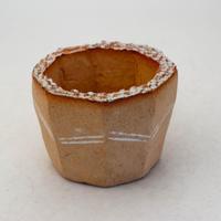 陶器製(2号ポット相当)多肉植物の欲しがる植木鉢 KESd-8470